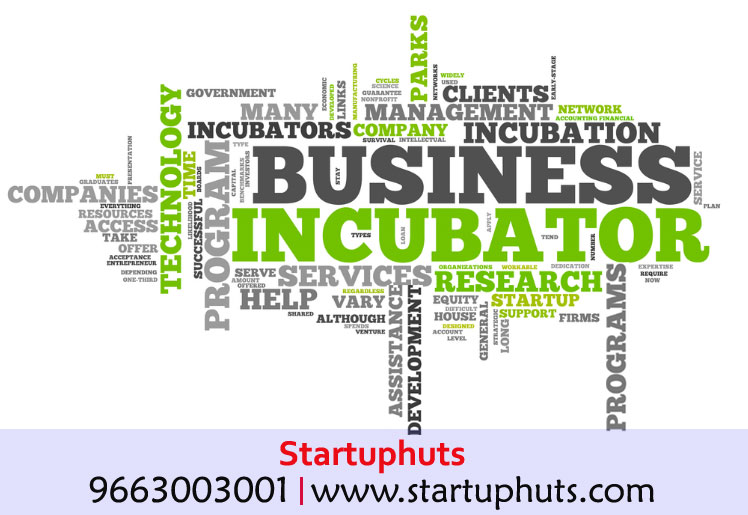 Being a Guardian to the Budding Entrepreneurs: Business incubators
